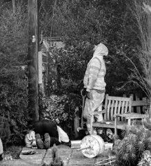 if it's not down there, it must be up here (louys:) Tags: candidpoleopen reachengineers openreach candid mono bw fuji xt2 xf18135mmf3556rlmoiswr work engineer pole seat garden menatwork