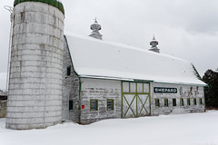 Shepard Barn (fotofish64) Tags: barn oldbarn weatheredbarn weatherbeaten snow snowcoveredroof sign rustic farm agriculture resort shepardfarm greenville perspective overcast weather decay ruraldecay newyork silo winter white faded westerlo albanycounty capitaldistrict