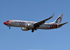 """Royal Air Maroc Boeing 737-800 CN-RGV """"60 Years Livery"""" (Planes Spotter And Aviation Photography By DoubleD) Tags: ram royal air maroc marocco special paint scheme livery 60 years red boeing 737 737800 winglets cfm landing toulouse lfbo airport france spotters spotting planespotters canon eos"""