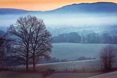 frosty morning (Rita Eberle-Wessner) Tags: landscape landschaft hügel hills berge tal valley häuser houses village dorf baum tree bäume trees tromm rimbach sonnenaufgang sunrise frost frostig frosty odenwald grosbreitenbach wiesen meadows pasture weiden mist dunst wald forest weschnitztal