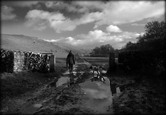 After the Storm (Simon Corble) Tags: dove storm hike walk dog springer ramble journey expedition peak peakdistrict valley dale clouds wet mud weather bobble hat bobblehat dexter spaniel dovevalley dovedale whitelightwhitepeak whitepeak simoncorble corble hills fields rural track path