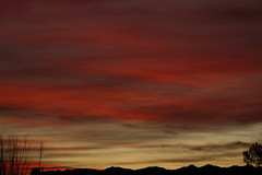 Sunrise 2 13 19 #06 (Az Skies Photography) Tags: rio rico arizona az riorico rioricoaz canon eos 80d canoneos80d eos80d canon80d cloud clouds red orange yellow gold golden salmon black february 2019 sky skyline skyscape arizonasky arizonaskyline arizonaskyscape sun rise sunrise morning dawn daybreak arizonasunrise 13 february132019 21319 2132019