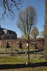 2019 België 0004 Achel (porochelt) Tags: achel belgië b limburg belgium belgien belgique bélgica