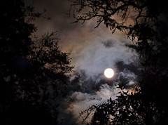 Super Moody (heric09) Tags: moon supermoon night sky clouds mood moody fuji nature
