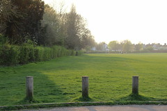 St Georges Park,1 (doojohn701) Tags: bollards grass green trees vegetation haze sunlight sky hedge distance park sidcup uk