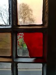 2019-01-06: Peeling Back (psyxjaw) Tags: cambridge window cover colour cinema picturehouse bar
