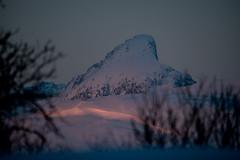 Tromsö 2019 (355 von 699) (pschtzel) Tags: 2019 nordlicht tromsö