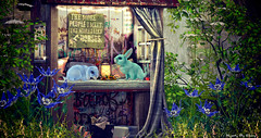 Majesty- Quiet Moments (Ebony (Owner Of Majesty)) Tags: drd jian fameshed majesty majestysl majesty2019 homedecor homeandgarden homes homesweethome garden greenery greenacres spring springflowers animals virtual virtualliving virtualservices virtualspaces videogames livingspaces mesh secondlife sl