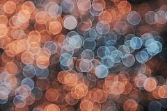 The last Unicorn (Pascal Volk) Tags: berlin mitte spandauerstrase cityquartier domaquarée berlinmitte crazytuesday invierno winter bokehlicious soapbubblebokeh bokeh dof depthoffield canoneosr meyeroptikgörlitzprimotar135135v 135mm dxophotolab m42 kreise circles rings círculos fujisuperiahg1600 dxofilmpack