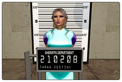 Taraa-Mugshot (tashani.rose) Tags: taraa kitty canary jail cage prison sheriff mugshot secondlife insane crazy arrested käfig kanarienvogel