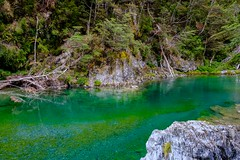 20181229 023 Greenstone Track d1 (scottdm) Tags: 2018 day1 december greenstonetrack guidedhike newzealand southisland summer thegrandtraverse travel ultimatehikes