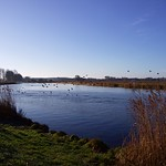 Buckenham Marshes RSPB thumbnail