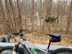 2019 Bike 180: Day 26 - Through the Woods (mcfeelion) Tags: cycling bike bicycle bike180 2019bike180 springfieldva lakeaccotinkpark winter