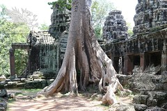 Angkor_Banteay Kdei_2014_64