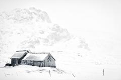The storm (A. Gosewehr) Tags: snowstorm storm house barn bw winter winterstorm lofoten norway norwegen sturm schneesturm