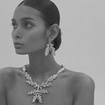 jewelryの写真