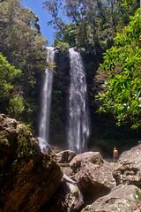 Twin Waterfalls, Springbrook NP (Tatters ✾) Tags: australia brisbane springbrook nationalpark waterfalls falls hiking geotagged
