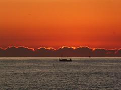 Primer amanecer 2019 (6) (calafellvalo) Tags: amaneceralbasolcalafellseaalbadasunrise amanecer sunrise amanecerdelaño2019 alba albada sea mar calafellvalo contraluz calafell aves gaviotas