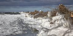 Port Dalhousie Ontario 2019 (John Hoadley) Tags: portdalhousie pier reconstruction stcatharines ontario 2019 january canon eosr 24105 f13 iso400 ice lakeontario