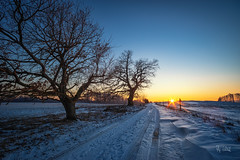 2019 Winter Sunset (jeho75) Tags: sony a7ii minolta rokkor md 17mm ultraweitwinkel germany deutschland harz winter sunset sonnenuntergang abend evening landscape landschaft