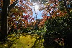 Japon_2018_56