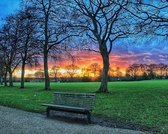 Time to relax (LeanneHall3 :-)) Tags: groupenuagesetciel sunset cloudsstormssunsetssunrises purple pink white clouds talkativeclouds landscape skyscape relax relaxing bench eastpark hull kingstonuponhull canon 1300d