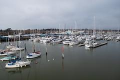 DSC04257 (MartinElwood) Tags: lymington harbour yachts