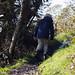 clear winter cascade head hike