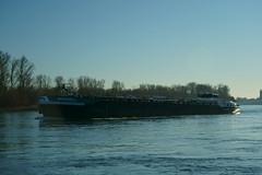 TMS MAXWELL (Lutz Blohm) Tags: tmsmaxwell tankschiff speyer gütermotorschiff binnenschifffahrt binnenschiffe rhein rheinschifffahrt sonyfe24105mmf4goss fluskilometer402 sonyalpha7aiii rheinzutal