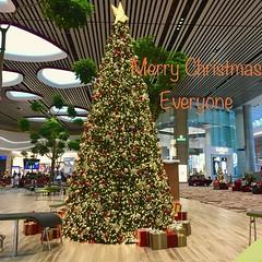 SEASON'S GREETINGS from Singapore! (Veselina Dimitrova) Tags: merrychristmas christmastree singapore seasonsgreetings