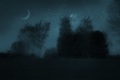 Night in park ... (Julie Greg) Tags: art abstract dreamy park planets moon tree trees texture colours stars canon sky