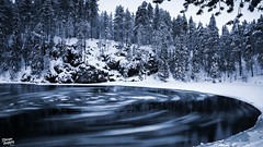 A vinyl record (Stefan Gerrits aka vanbikkel) Tags: finland oulangankansallispuisto kuusamo oulankanationalpark canonef2470mmf28liiusm canon5dmarkiii nature wildlife vanbikkel tree trees winter talvi icefloats ice
