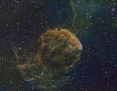 Jellyfish Nebula (martin.kermit) Tags: zwo asi1600 narrowband ic443 jellyfish jellyfishnebula sharpless248 astrophotography telescope astrophoto spacetravel nebula astronomy astronomyphotography urbanastro nightsky astronomer astrophysics nightscape astrobackyard spacepics astropics keeplookingup starrysky longexposure