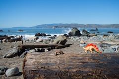 DSC_0931 (Sagahstoomeh) Tags: red san francisco sf bay area city california ca cal norcal nor