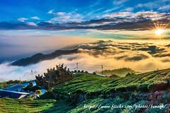 夕陽 (Benz Yu) Tags: 房屋 雲彩 天空 色溫 彩霞 吳鳳廟 茶園 山岳 雲瀑 雲海 夕陽 風景 台18線 大阿里山 頂石槕