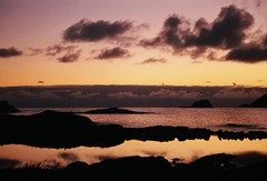 (mari-ann curtis) Tags: 35mm colour summer sunshine light grotle norway coast purple sky clouds nostalgia orange reflections rocks travel film 2017