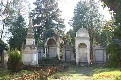 IMG_8254 (Pfluegl) Tags: wien vienna zentralfriedhof graveyard europe eu europa österreich austria chpfluegl chpflügl christian pflügl pfluegl spring frühling simmering