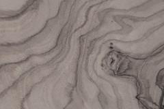 Olive Wood  Scape (gripspix) Tags: 20180913 archiv texture textur wood holz woodgrain holzmaserung olivenholz olivewood macro makro freehand freihand bw schwarzweis