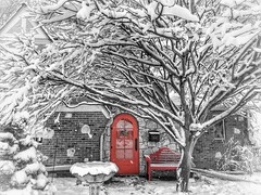 Home for the Holidays (vwcampin) Tags: iphoneographer iphoneography iphoneology iphonology omaha nebraska florence wymanheights homefortheholidays home frontdoor house snowy tree blackandwhite snowing snow merrychristmas happyholidays holidays winter bench door red colorsplash composition