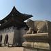 Korean lions