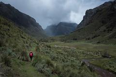 Exploring Mordor (Aymeric Gouin) Tags: peru pérou valley vallée mountain montagne landscape paysage paisaje landschaft nature green mood rain pluie dark hiking randonnée huaraz ancash travel voyage fujifilm xt2 aymgo aymericgouin