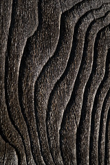 Wood fence close-up with wood grain and wood knots (Jim Corwin's PhotoStream) Tags: abstract aging backgrounds board builtstructure closeup contrast cracked cracks design designelement deterioration fence fenceboard grain gray grayish knot knottedwood line lumberindustry macrophotography material naturalpatterns nobody oldboards outdoors pattern patterns photography plank roughsurface shapes simplicity sparse striped texture textured texturedeffect vertical weathered wood woodfence woodgrain woodknot woodpatterns woodplank woodmaterial