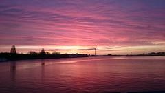 Lilac Morning- no editing (Peter ( phonepics only) Eijkman) Tags: amsterdam zaandam zaanstad zaan zaanstreekwaterland city water noordzeekanaal nederland netherlands nederlandse noordholland pont pontveer hempont holland