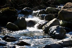 Fast flowing river (Baz2016) Tags: fastriver water nature outdoor river rapids