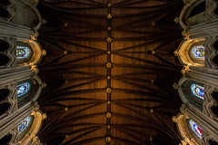 Ireland (audrakors) Tags: ireland cork airija korkas city miestas travel traveling kelionė fotografija fotografas photography photographer fotografė nikon d3200 iamnikon tourist nature portrait cobh church cathedral catholic detais lightning