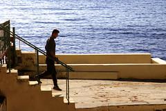 Sto dipingendo il mare (meghimeg) Tags: 2019 rapallo uomo man mare sea scala stairs scendere down acqua water
