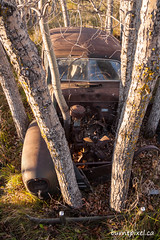 Reclamation 1 (burntpixel.ca) Tags: canada manitoba winnipeg photo photograph rural fine art patrick mcneill burntpixel beautiful amazing landscape canon 50d canon50d wander komarno trees car automobile rurex abandoned relclamation rust rusting forgotten old overgrowth relic history