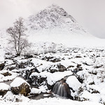 The Herdsman of Etive by Iain Houston