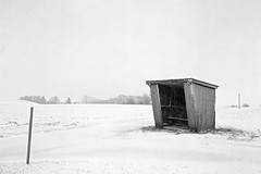fomapan200_0004 (ekech) Tags: winter schnee snow analog analogue ishootfilm istillshootfilm buyfilmnotmegapixels largeformat grosformat 4x5 horseman45hd fomapan200 foma fomadonlqn landschaft landscape lausheim blackwhite monochrome schwarzweiss