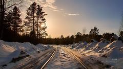 Railway Winter (ru245kyuoku) Tags: winter sun railway railroad snow warm